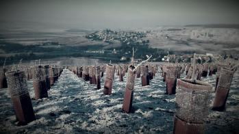 Nous avons eu une belle couverture de givre dès les premiers jours de l'année : très beau à photographier, mais plus difficile à travailler dans ces conditions ! Voici une vue de notre village et de Châtillons, depuis une de nos vignes perchée sur le flanc de la colline.